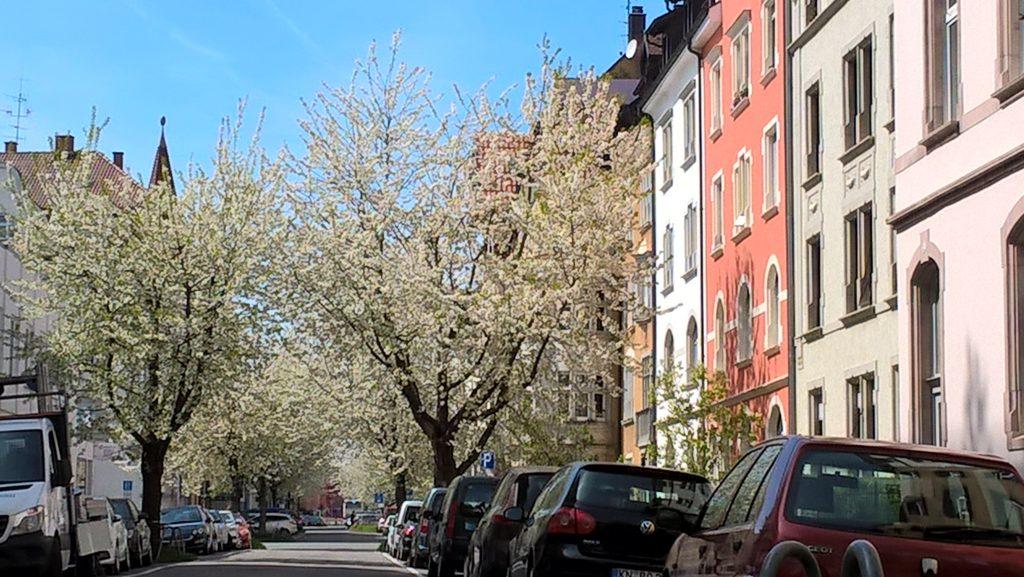 Konstanz an einem Frühlingsmorgen