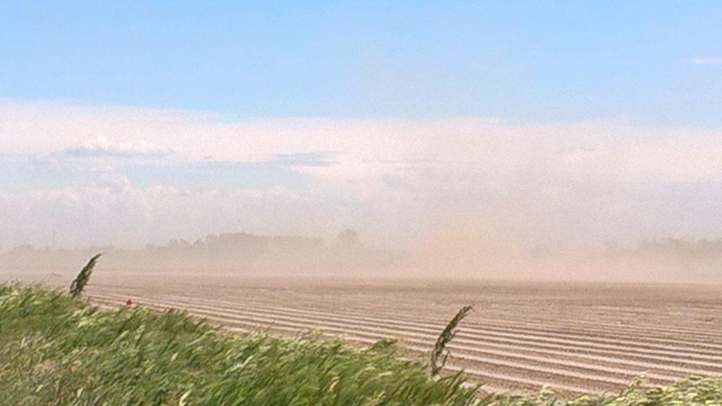 Plötzlicher Sandsturm in der Pampa